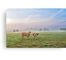 A Misty September Moooning Canvas Print
