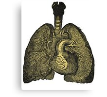 Heart & lungs Canvas Print