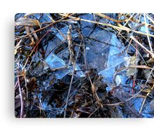 Reedy Ice Canvas Print