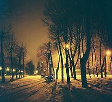 *** by Igor Philipenko