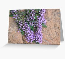 Thyme - Grass Valley, California Greeting Card