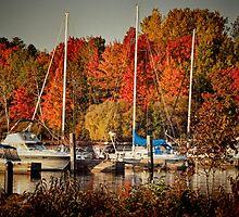 Buffalo Bay Marina 2 by Thomas Young