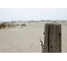Old Fence Pole Photographic Print