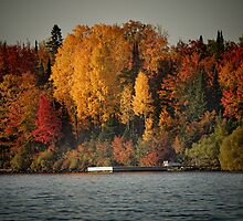 Autumn Arrives to Buffalo Bay by Thomas Young