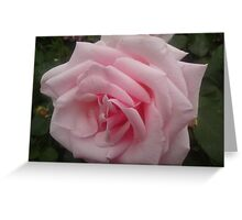 Gifted by Nature Greeting Card
