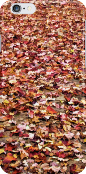 Autumn Leaves by Kathy Weaver