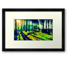 The Beautiful Trees Framed Print