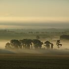December Morning-Northumberland by Francis Drake