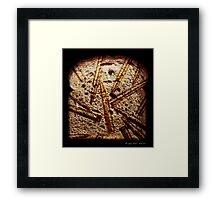 Miracle Of Choice Framed Print