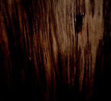 Wood Texture by rainbowx1994