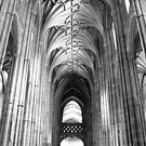 Canterbury Cathedral - The Nave - B&W by rsangsterkelly