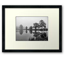 Foggy Pond Framed Print