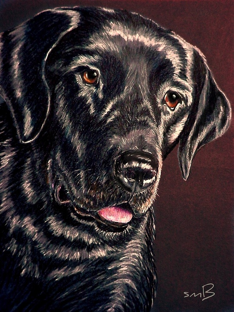 """Signature Grin"" Portrait Of A Black Lab by Susan Bergstrom"