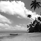 Paradise in Black & White by Of Land & Ocean - Samantha Goode