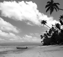 Paradise in Black & White by Samantha  Goode
