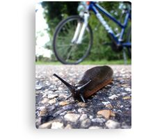 I think I'll Need the Seat lowered... Canvas Print