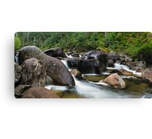 Natural Coolant Canvas Print
