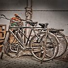 Two Bikes in Kunming by TeaRose