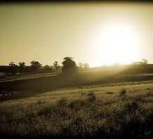 Country Victoria by Andrew Wilson