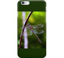 Dragonfly #4 iPhone Case/Skin