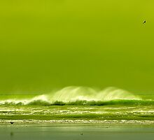 Green with Envy by ChrisMcKay