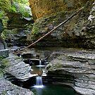 Cascading whirlpools in Watkins Glen  by Gene Walls