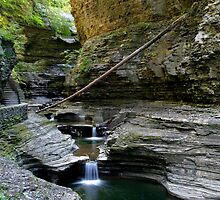 Cascading whirlpools in Watkins Glen  by Gene Walls
