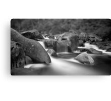 Mystic in the Mountain Canvas Print