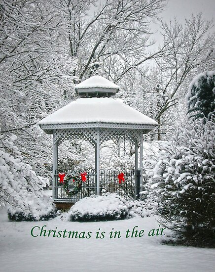 Christmas is in the Air.. by Susan S. Kline