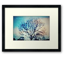 Window of trees Framed Print