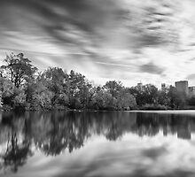 Central Park by John Robb
