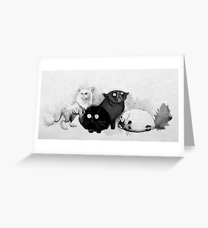 Persian cats Greeting Card