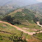 Thousand of hills on the road to Guitarama, Rwanda by monsieurI