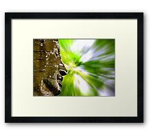 Smiling Buddha with background Framed Print