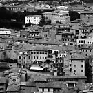 Italy – Siena by whitmarshphoto