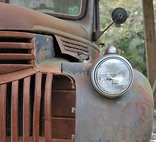 Rusted old Chevy Pick Up Truck by wessonp