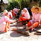 Young female monks Burma/ Myanmar  by Peter Voerman