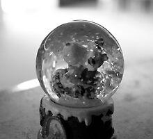 A Snow Globe by Nic Rollo
