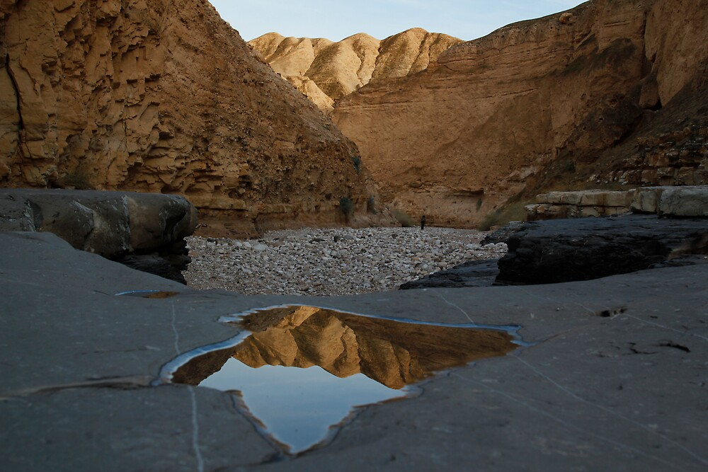 Canyon in the desert by MichaelBr