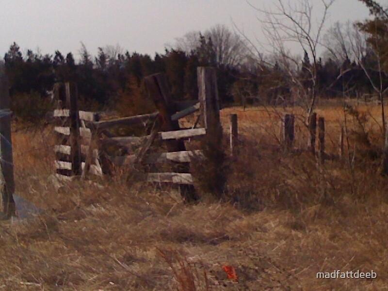 old fence by madfattdeeb