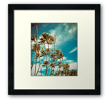 Hawaiian Palm Trees In The Wind Framed Print