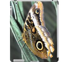 Owl Butterfly iPad Case/Skin