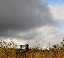 Penshaw Monument by Carol Bleasdale