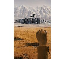 Fantastic Mr. Fox Photographic Print