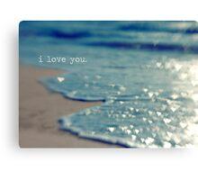valentine - i love you Canvas Print