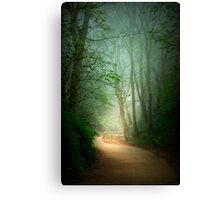 Along the Path Canvas Print