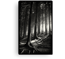 Bucknell Forest Canvas Print