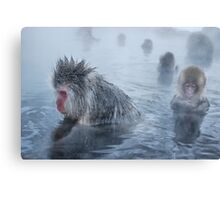 relaxing in the hot springs Canvas Print