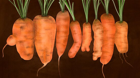Carrot line-up by digestmag