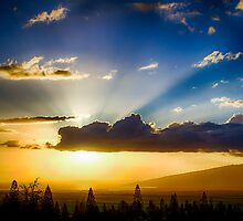 Maui Sunset  - 1/10/13 by NealStudios